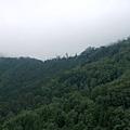 2009-07-26_03.jpg
