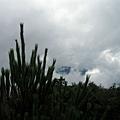 2009-07-26_09.jpg