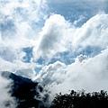 2009-07-26_19.jpg