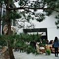 2010-01-17_03.jpg