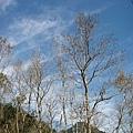 2010-01-30_38.jpg