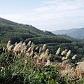 2010-01-30_60.jpg