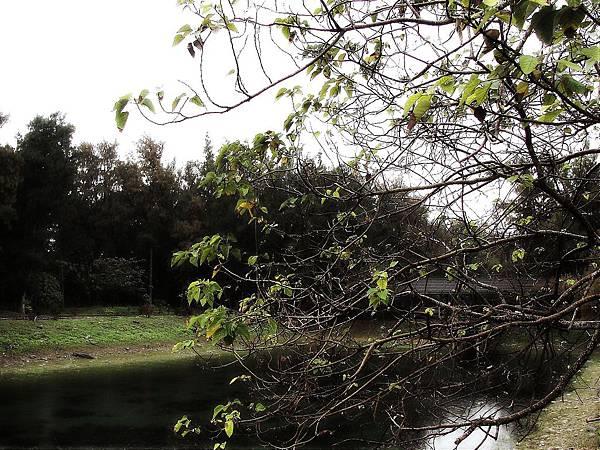2010-02-19_027.jpg