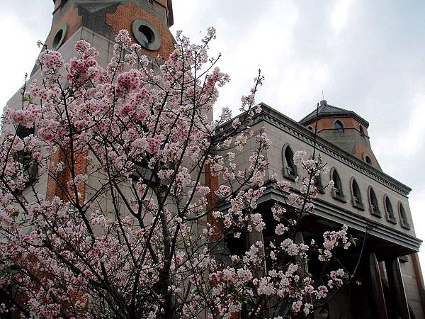 2010-03-27_37.jpg