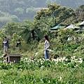 2010-04-01_37.jpg