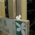 2010-04-25_45.jpg