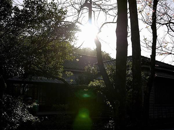2010-12-31_047.jpg
