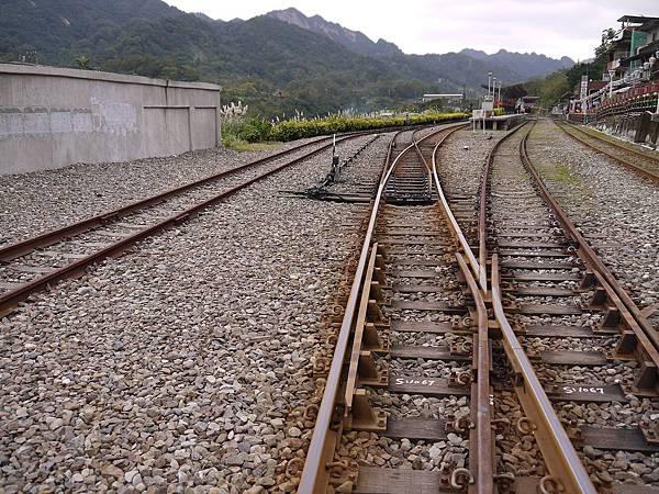 2011-01-01_23.jpg
