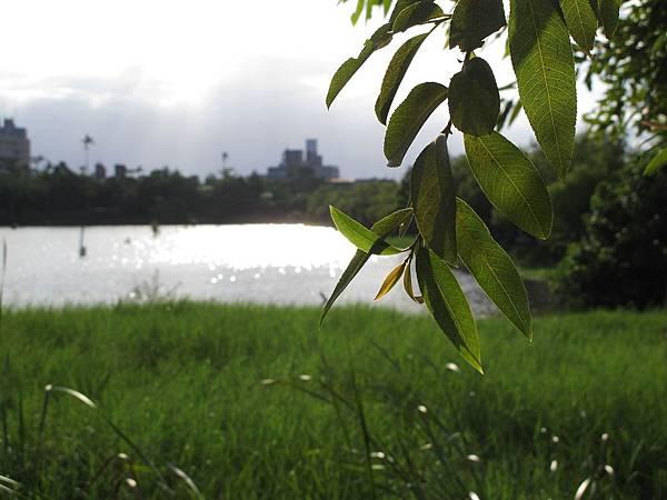 2010-09-10_085.jpg