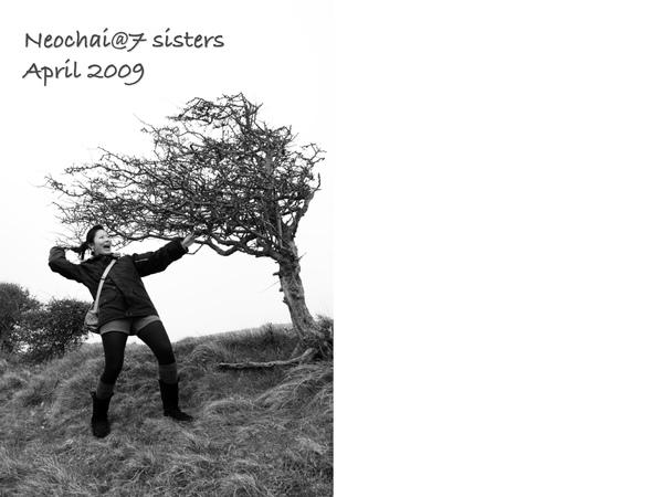 blog-7 sisters-5.jpg