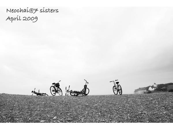 blog-7 sisters-8.jpg