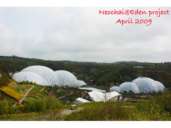 blog-eden project-1.jpg
