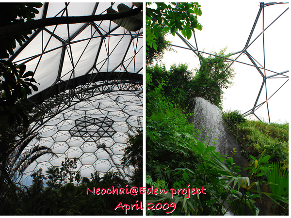 blog-eden project-23.jpg