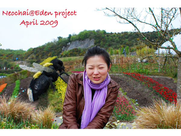 blog-eden project-21.jpg