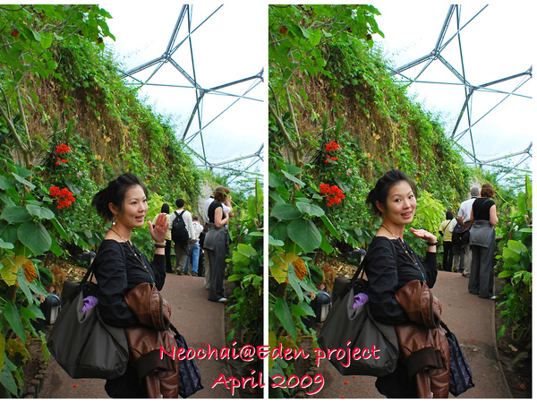 blog-eden project-26.jpg