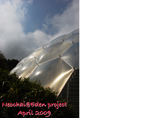 blog-eden project-42.jpg