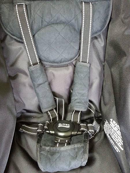 12 seat belt