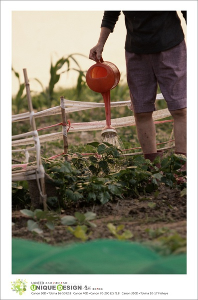 種菜去5.jpg