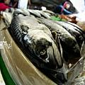 漁3.jpg