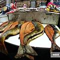 漁4.jpg