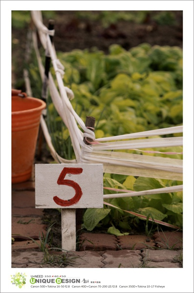 種菜去4.jpg