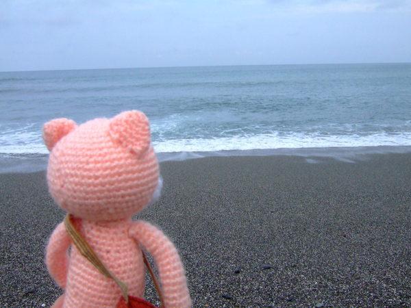 momo與海