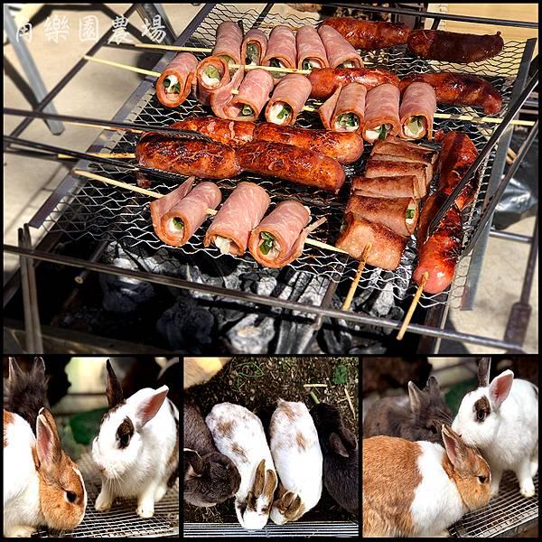 【八德亲子】兔兔互动餵食亲子农场-角乐园农场