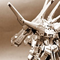 DSC02615_old.jpg