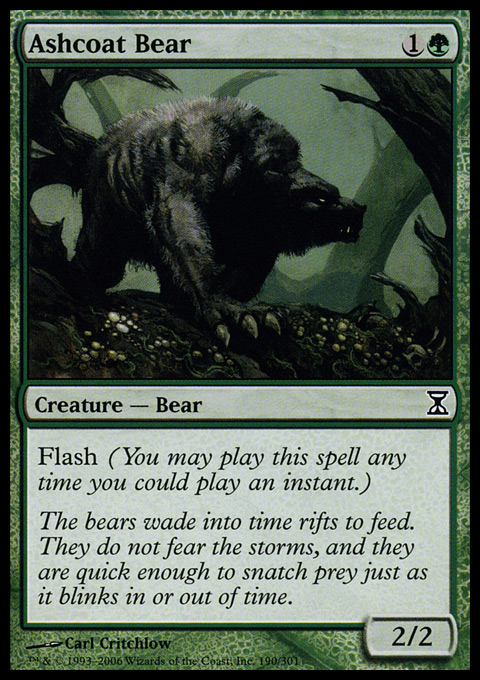 Ashcoat Bear.full.jpg