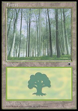 Forest-PT(4).jpg