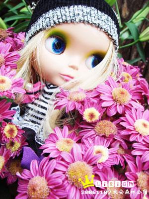 擠在滿滿的花裡