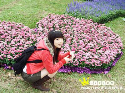 又是心型的花~哈哈哈!!