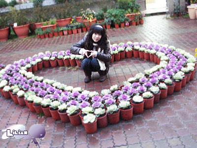 愛心小花圃
