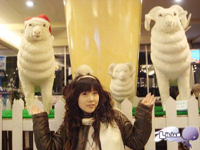 國民賓館裡的聖誕羊咩咩一家人