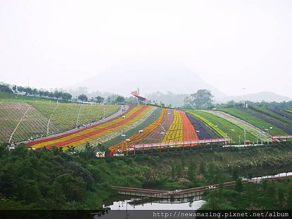 東部華僑城 (16)