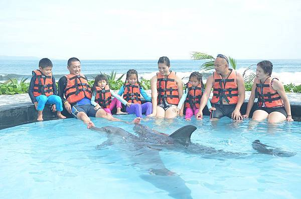 峇里島戀戀海豚魅力灣