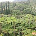 沖繩_180301_0001.jpg
