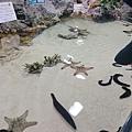 沖繩_180301_0007.jpg