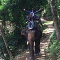 清邁大象園_180803_0010.jpg