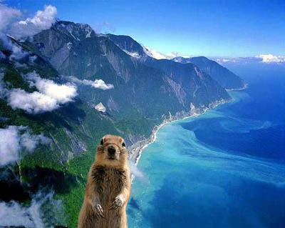 班夫松鼠與清水斷崖