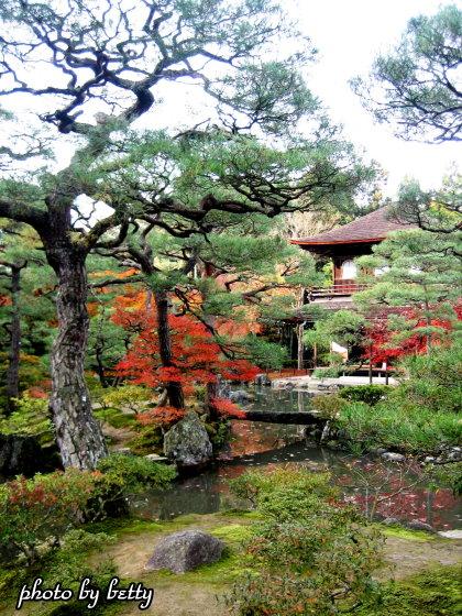 銀閣寺庭園1
