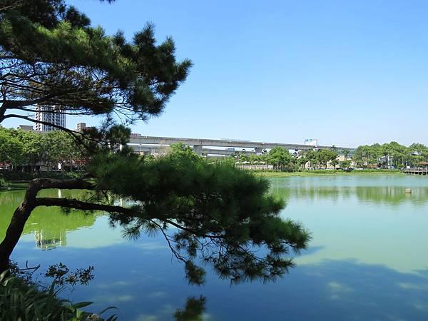 0151桃園市龜山區龜山運動公園長庚湖