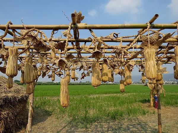0624彰化縣田中鎮「稻草人藝術節」在望高寮