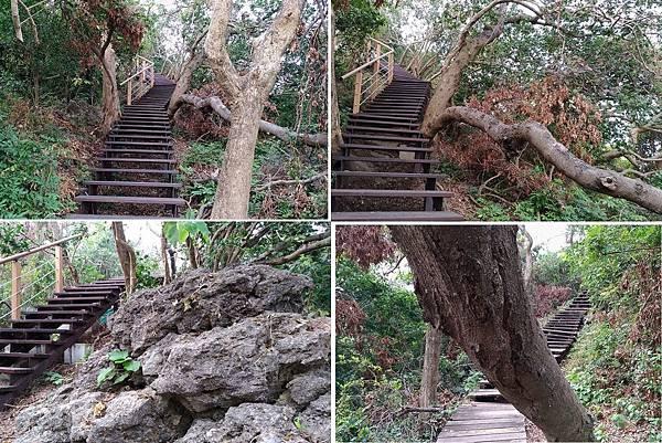 0523高雄市左營區龜山登山步道