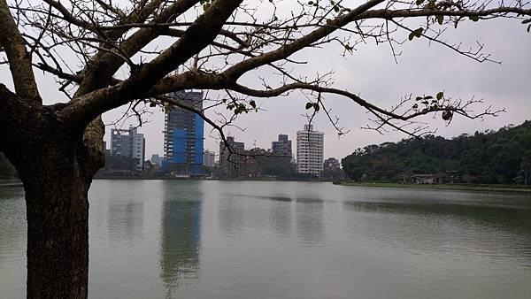 0090台北市內湖區碧湖公園