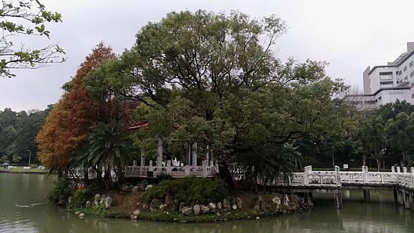 0091台北市內湖區碧湖公園