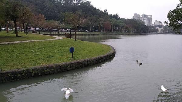 0093台北市內湖區碧湖公園