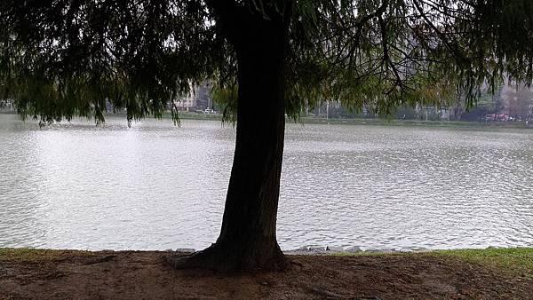 0100台北市內湖區碧湖公園