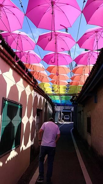 0607彰化縣和美鎮 Rainbow House 卡里善之樹