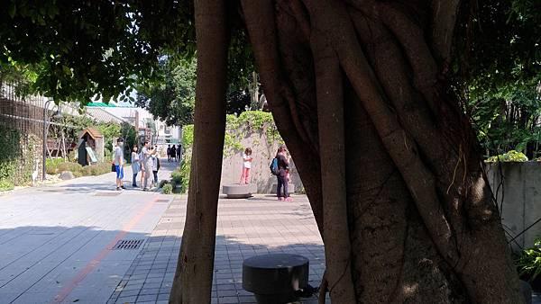 2429台中市西區台中文學公園